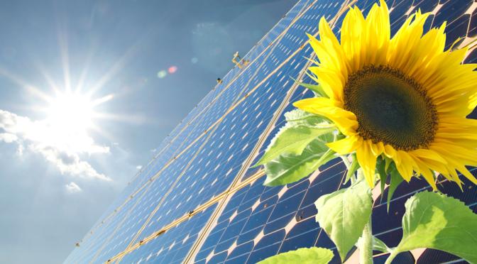 太陽光発電導入後の効果